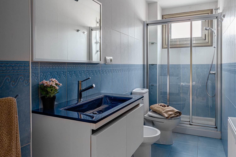 Cuarto de baño azul con ducha en piso Rúa Betanzos_ maceta sobre lavabo y toalla sobre wc con flores secas